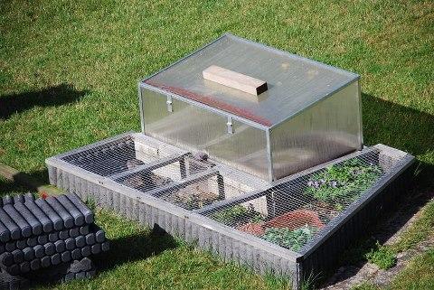 brille kaufen was muss ich beachten louisiana bucket brigade. Black Bedroom Furniture Sets. Home Design Ideas